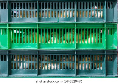 Hatching yellow chicks in baskets and boxes. Agro-industrial hatchery.
