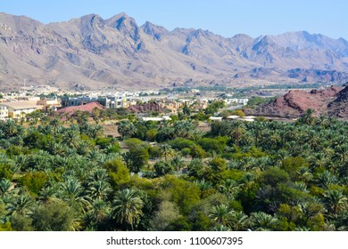 Hatta Oasis. Dubai Emirate. United Arab Emirates