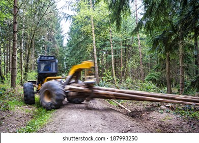 Hauling wood in the forest by a grapple skidder, motion of hauling machine and hauled tree trunks blurred