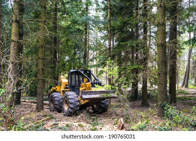 Hauling wood in the forest by a grapple skidder