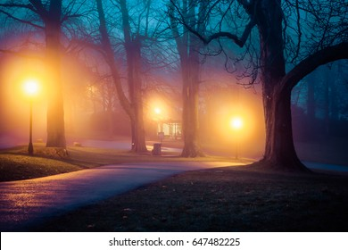 haunted alley - foggy evening in the park