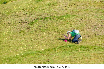 Havang, Sweden - May 18, 2017: Documentary of everyday life at Havang nature reserve. Female tourist with backpack taking pictures of cowslip with her mobile phone.
