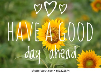Have a good day ahead wording with sunflower on background