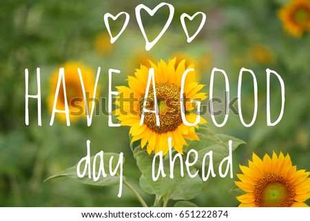 Have Good Day Ahead Wording Sunflower Stock Photo Edit Now