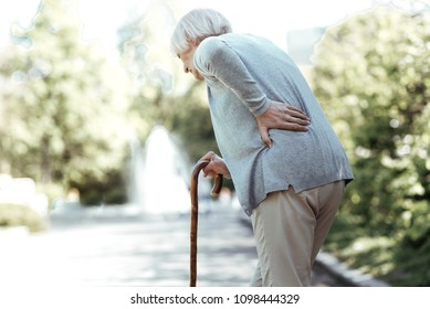 Have pain. Grey-haired female person keeping her back bent and holding walking stick while standing in semi position