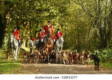 HAVELTE, NETHERLANDS - OCTOBER 29, 2016: Members of a hunting association out following a ready made scent cross country. Drag hunting, following an artificial scent is an alternative for fox hunting.