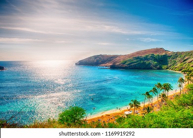 Hawaii background photo