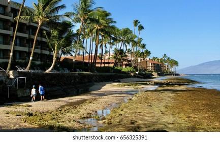 Hawaii beach low tide