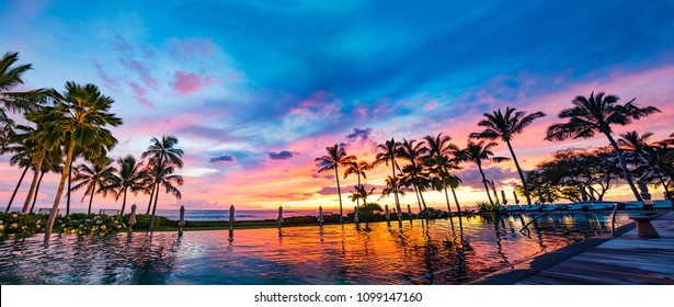 Hawaii Honolulu Oahu Pool Side Sunset And Palm Trees