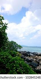 Hawaii Oahu Sora and the sea