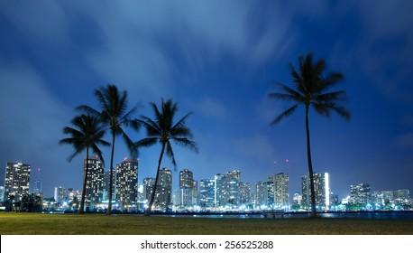 Hawaii skyline and palm trees at night