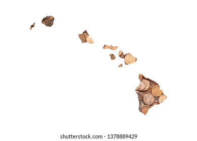 Hawaii State Map and Money Concept, Piles of Coins, Pennies