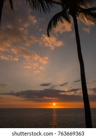 Hawaii sunset with ocean and palm tree