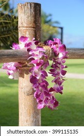 Hawaiian lei on the wood fence