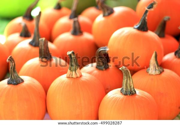 Hawaiian pumpkin
