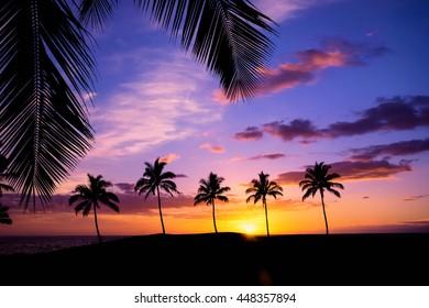 Hawaiian sunset framed with palm tree leaves