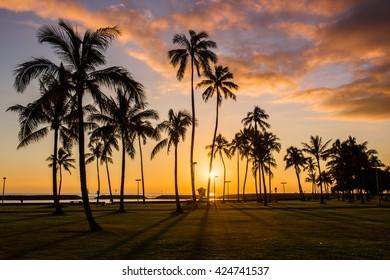 Hawaiian sunset, Honolulu, Oahu