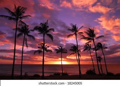 Hawaiian Sunset Molokai Hawaii