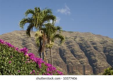 Hawaiian tree and flowers against misty Waianae Mountains
