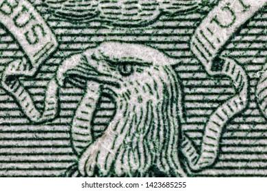 Hawk head on the back of US 1 one Dollar bill, super macro, 5x, close up photo
