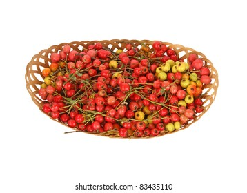 Hawthorn berries in a wicker basket on a white background