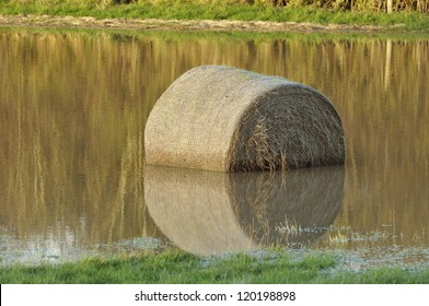 Hay bail with reflection in flooded field