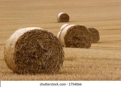 Hay bails in field