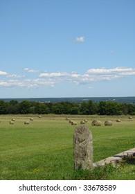 Hay Bails in a field