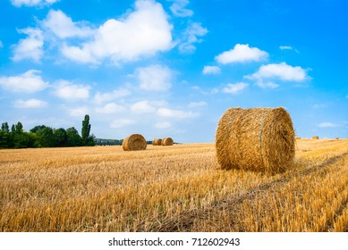 Hay bale. Agriculture field with sky. Rural nature in the farm land. Straw on the meadow. Wheat yellow golden harvest in summer. Countryside natural landscape. Grain crop, harvesting.