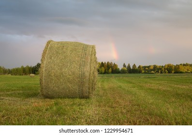 Hay bale on agricultural field after rain, rainbow in the background