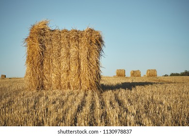 Hay bale on field with wheat straw and sky, rural landscape in the agriculture farm land at summer.