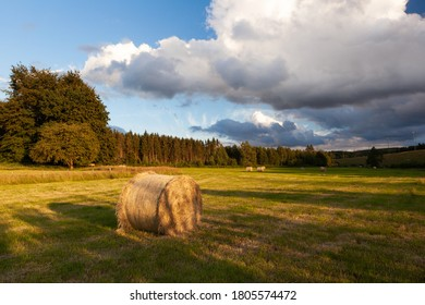 Hay bales in an agricultural landscape in the Ardennes, Belgium