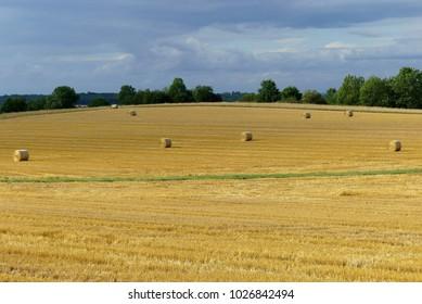 hay bales in the Eifel