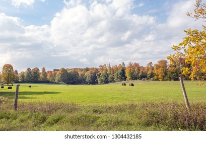 Hay bales in a field in autumn