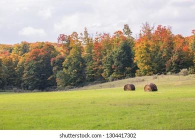 Hay bales in a field near Traverse City, Michigan