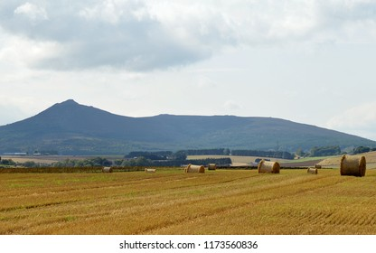 Hay Bales in a field, possibly the site of the Battle of Harlaw in 1411, in front of the hill, Bennachie, by Inverurie, Aberdeenshire, Scotland