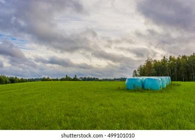 Hay bales on a empty field
