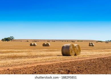 Hay bales on farmland with blue sky