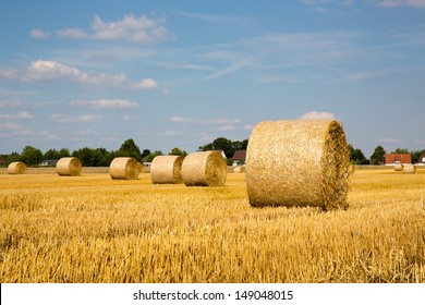 hay bales on grain field