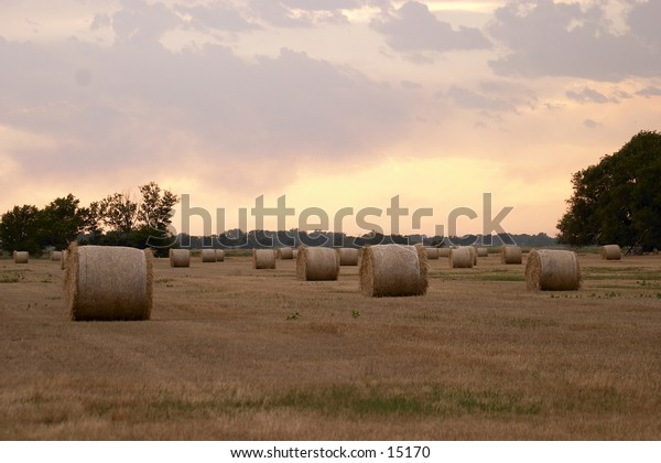 Hay bales on a summer evening