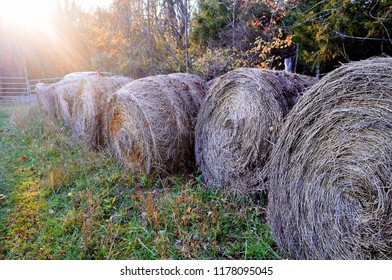 Hay bales sit in a Virginia field on a late summer day.
