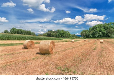 Hay bales (Straw rolls) on a late autumn afternoon. Germany.