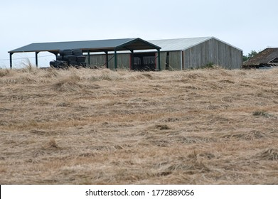 hay and barn ready for bailing and storing southern england