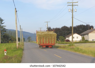 Hay has been harvested and is being transported on a quiet, country road/Hauling Hay/Transporting freshly cut and stacked hay