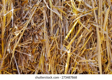 Hay photographed close. Used to feed the cattle. Suitable for background