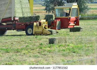 Hay picker scoops bale from field