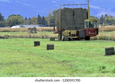 Hay picker at work