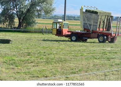 Hay picker/stacker in crop field.