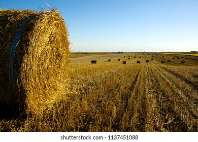 Hay roll from low angle with clear blue sky on the field