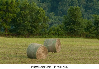 Hay rolls in farm field near the Blue Ridge Mountains in Virginia